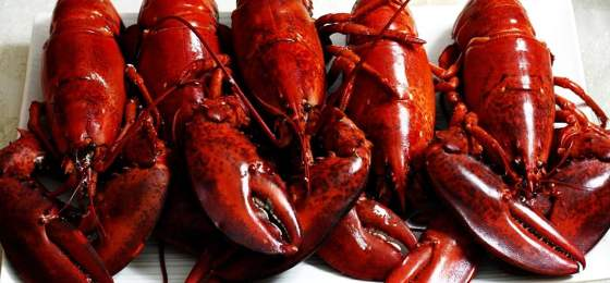 Illinois man accuses Red Lobster restaurant of unsafe premises