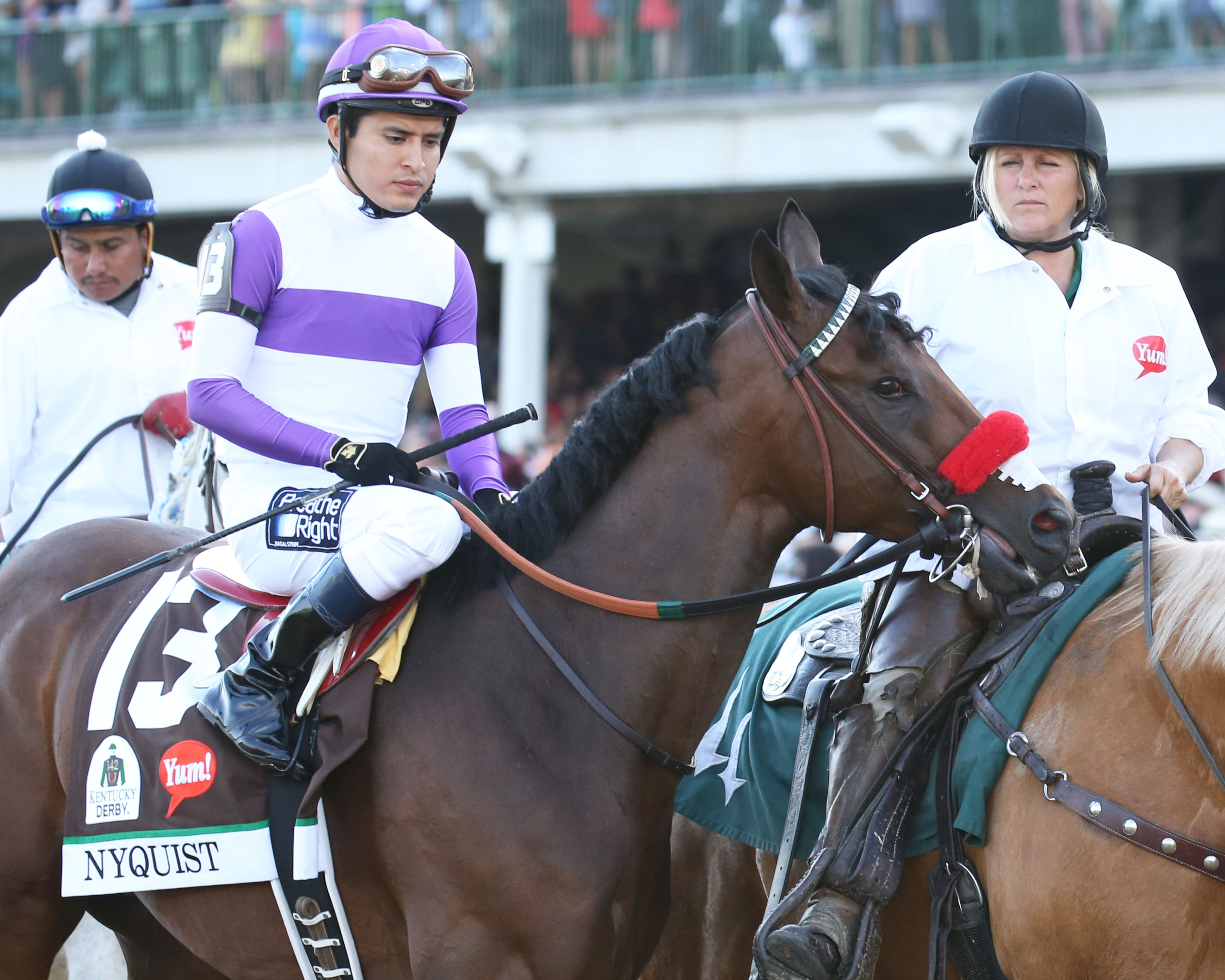 Kentucky Derby Winner Nyquist Recovering From Colic