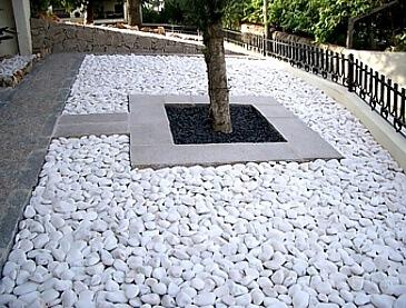 brispedra exemplos decorativos para jardim branca