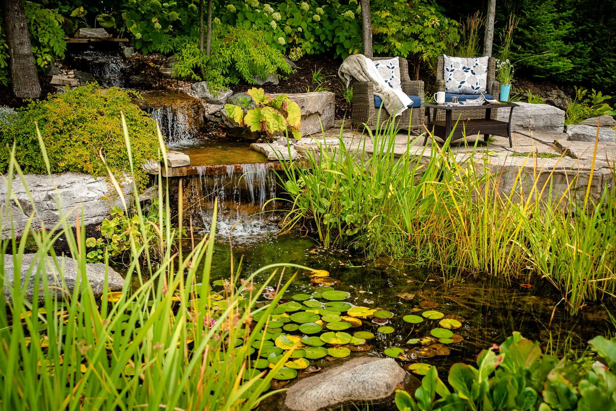 bassin d eau quietude cour arriere piscine spa realisations brisson paysagiste