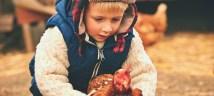 boy with chicken farm