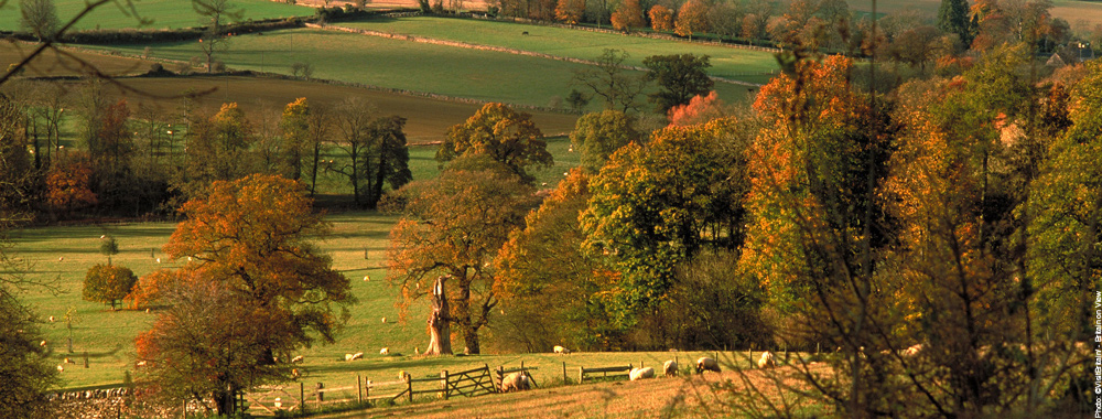 Fall Season Wallpaper The Cotswolds Britain Magazine The Official Magazine