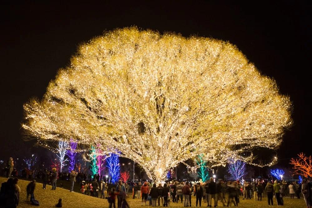 Holiday Lighting in Utah California Florida Arizona Chicago  Brite Nites