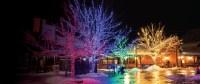 Christmas Landscape Lighting | Lighting Ideas