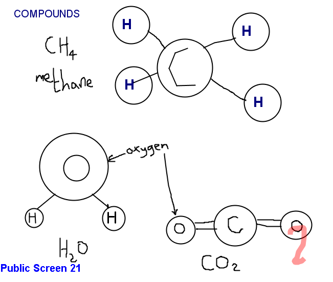 Sample Science Lesson Slides