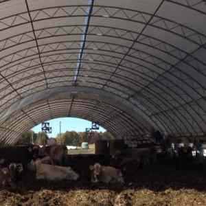 Snow Dairy Compost Bedded Pack Barn atlas building series