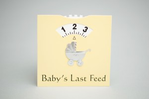 Baby Feed Wheel by Chiggs