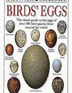 Birds eggs dk handbooks also british  bird lovers rh britishbirdlovers