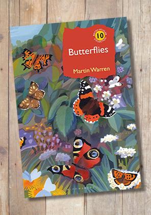 Butterflies by Martin Warren