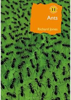 Ants by Richard Jones