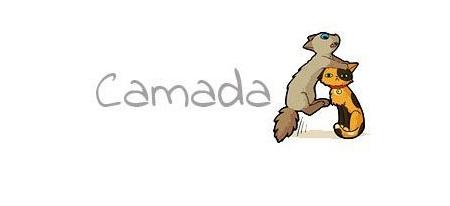 CAMADA A4