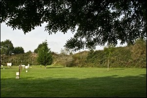 Sywell the Garden