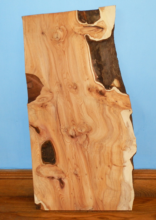 Yew And Sycamore Selected Boards British Hardwoods Blog