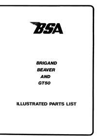 Easy-rider GT50 Brigand Beaver
