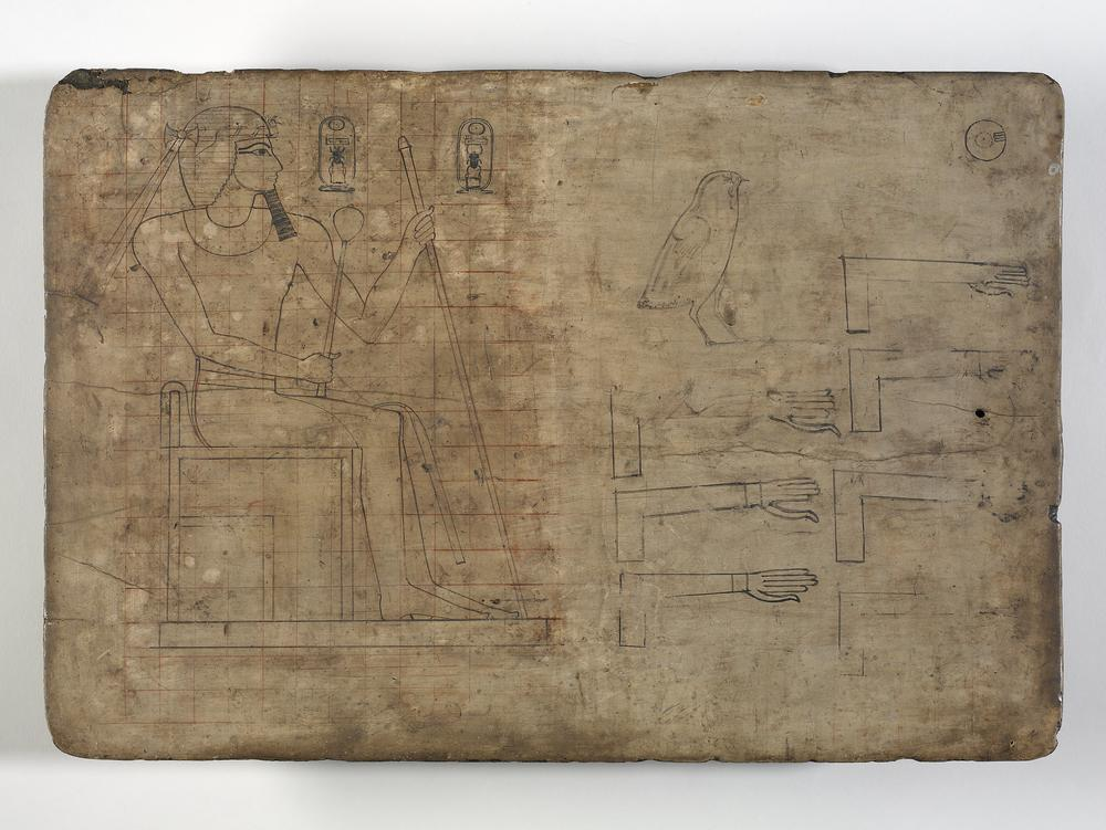 Wooden drawing board: this object consists of a rectangular wooden board covered with a thin layer of plaster. Originally a squared grid, ruled in red, covered the whole of one side of the board, the other side is blank. The grid still remains on the left half of the inscribed surface, where a seated figure of a king has been drawn. At some time, the grid was erased from the right side. On this part of the board there is now a well-drawn rendering of the quail chick hieroglyph; seven awkwardly drawn versions of a forearm with outstretched hand, also a hieroglyph; and a small sketch identifiable as a loaf of bread impressed with the imprint of fingers, since similar loaves are found among piles of offerings in temple and tomb scenes. The clumsy forearms are clearly by a different hand from those that drew either the king's figure or the quail chick. In each case, the outline of the arm itself is ruled, not drawn freehand, as was the usual practice, and the length of the thumb in relation to the fingers has presented a problem in at least two of the examples. To obtain the correct orientation of the forearms, one must turn the board upside down. Two cartouches are drawn in association with the king's figure; both contain the throne name Menkheperkare. This name was used by Thutmosis III during the time of his co-regency with Hatshepsut, as an alternative to his more usual prenomen, Menkheperre.