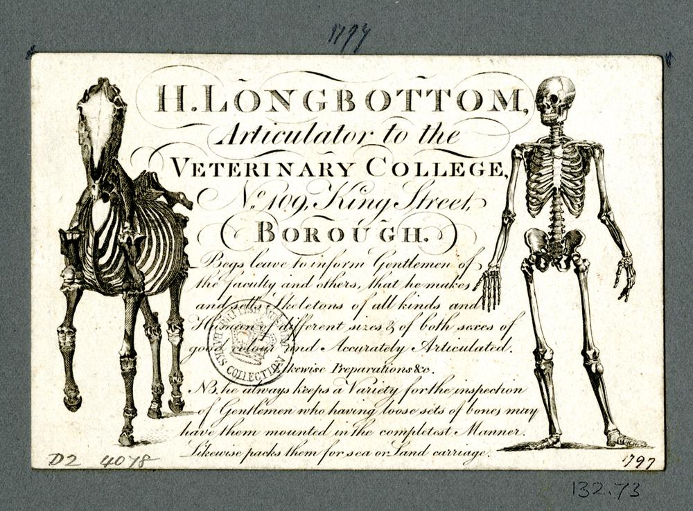 DRAFT Trade card of H Longbottom, skeleton supplier