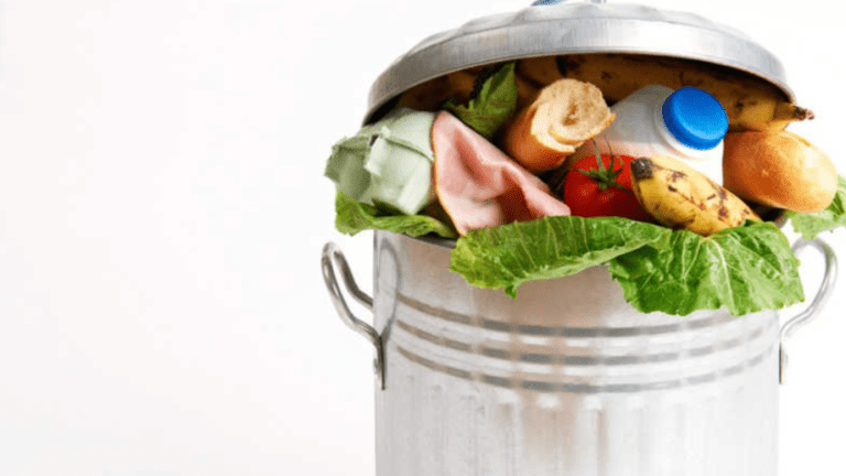 The problem of food waste solved by a Mosque