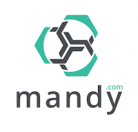 THE MANDY NETWORK