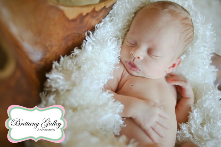 Cleveland Newborn Photographer | Brittany Gidley Photography LLC