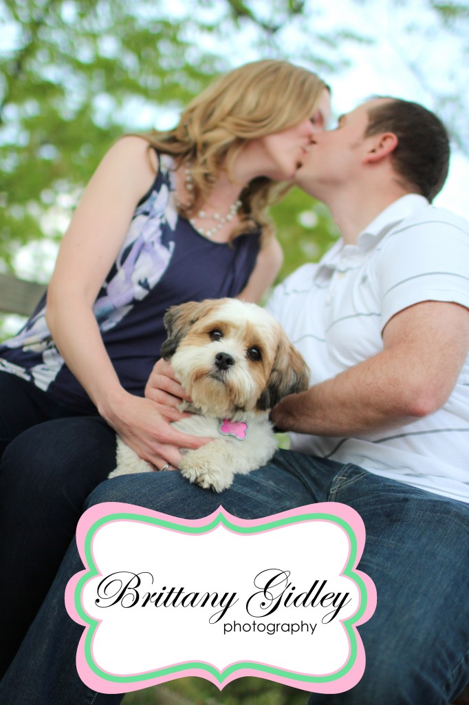 Cleveland Pet Photography | Brittany Gidley Photography LLC