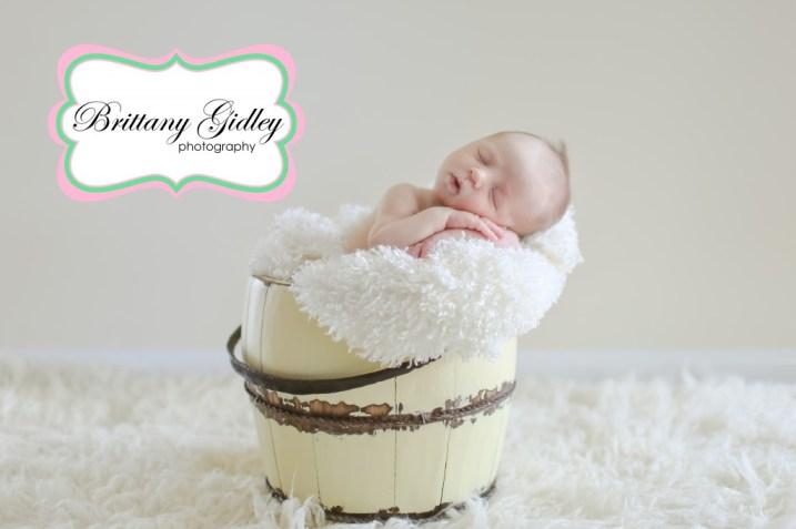 Best Newborn Photographer | Brittany Gidley Photography LLC