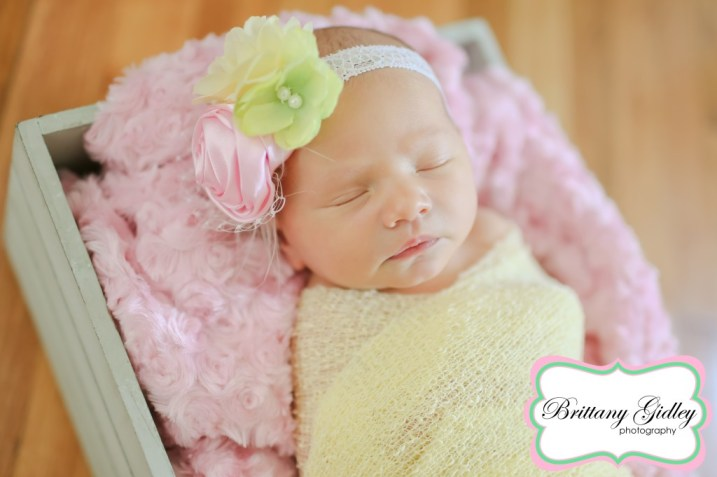 Newborn Photos| Brittany Gidley Photography LLC