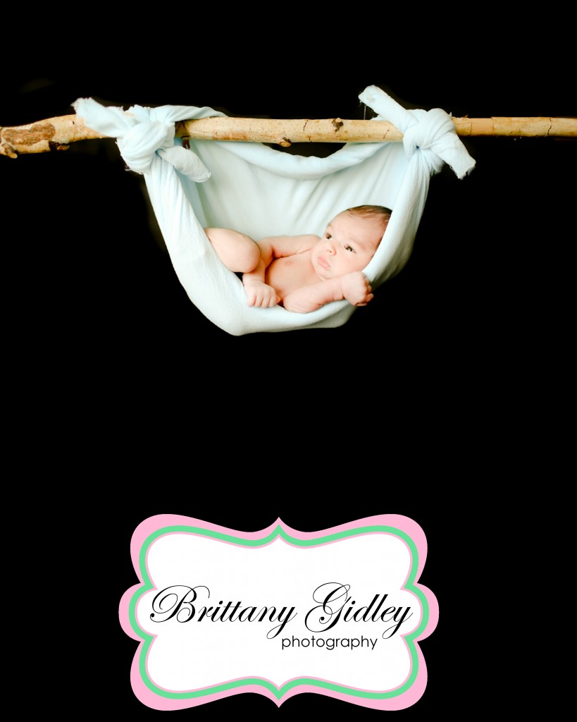 Cleveland's Best Newborn Photographer | Brittany Gidley Photography LLC