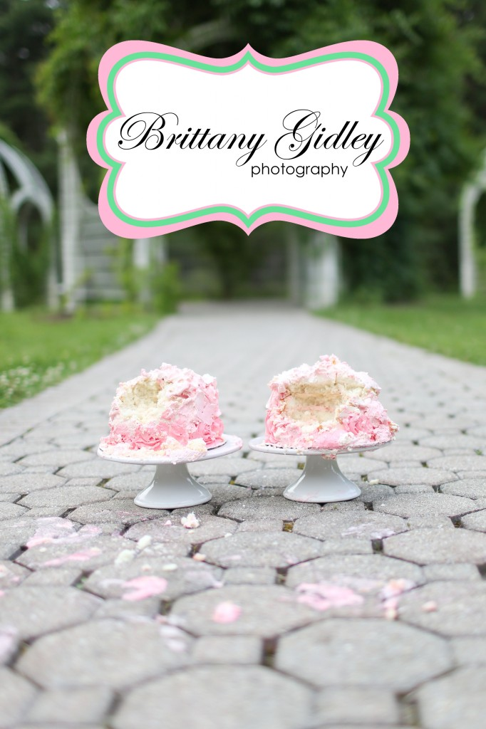 Smash Cake | Brittany Gidley Photography LLC