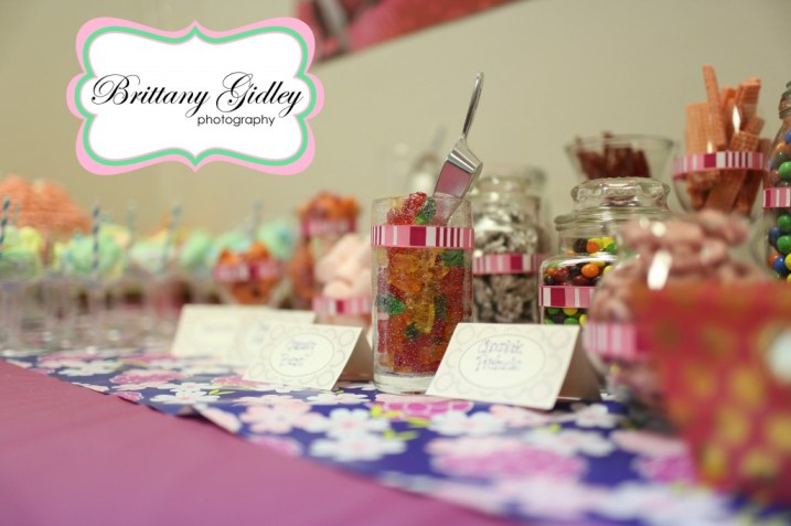 First Birthday | Brittany Gidley Photography LLC