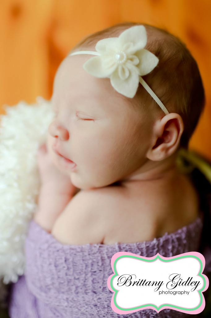 Akron Newborn Photographer | Brittany Gidley Photography LLC