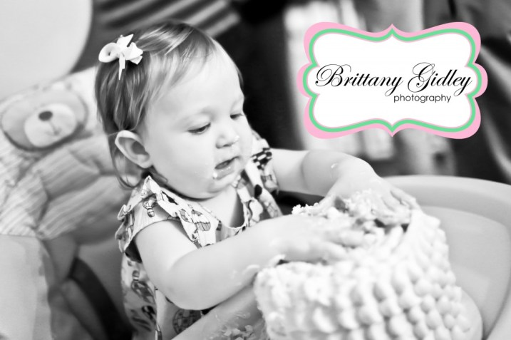 First Birthday Smash Cake | Brittany Gidley Photography LLC