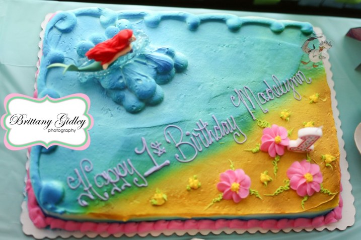 First Birthday Cake | Brittany Gidley Photography LLC