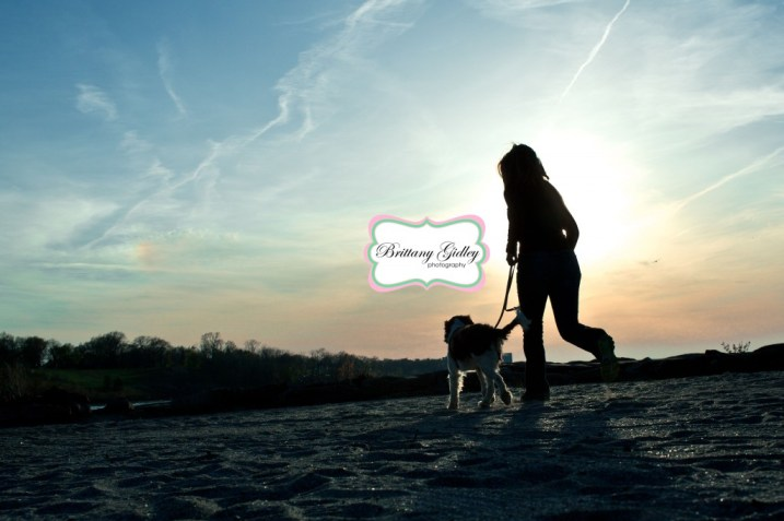 Dog Photography | Brittany Gidley Photography LLC