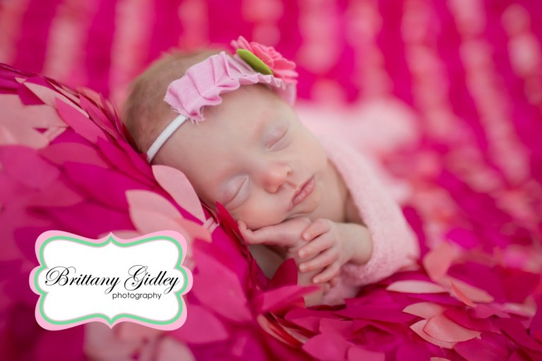 Newborn Portrait Session | Taco Pose | Prop Up Pose | Brittany Gidley Photography LLC