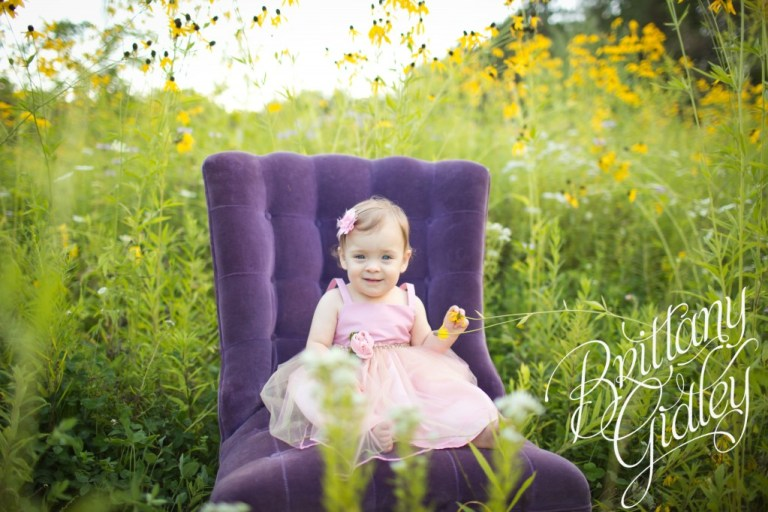Akron Photographer | Akron Photography | Toddler Photography | Baby Photography | Field | Flowers | Purple | Pink
