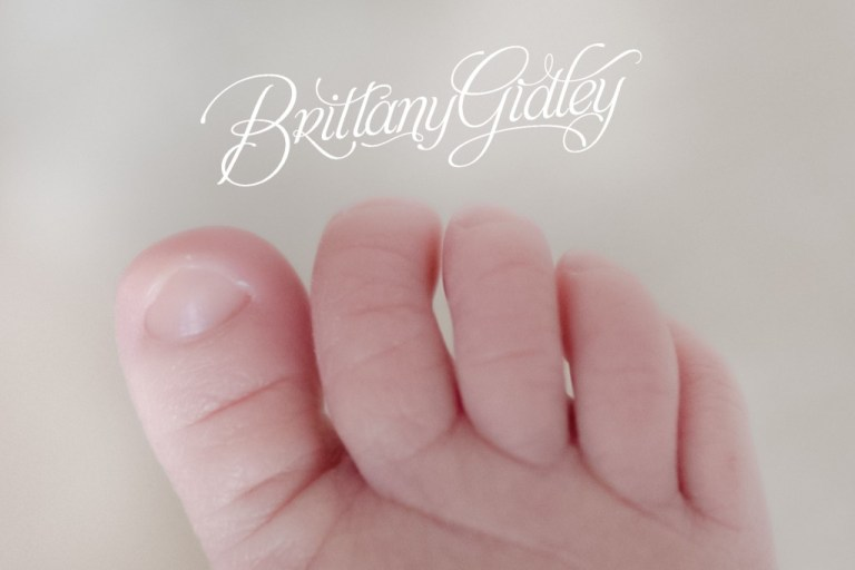 Best Baby Photographer | Details | Cream | Studio | Newborn Baby Studio | Newborn Baby