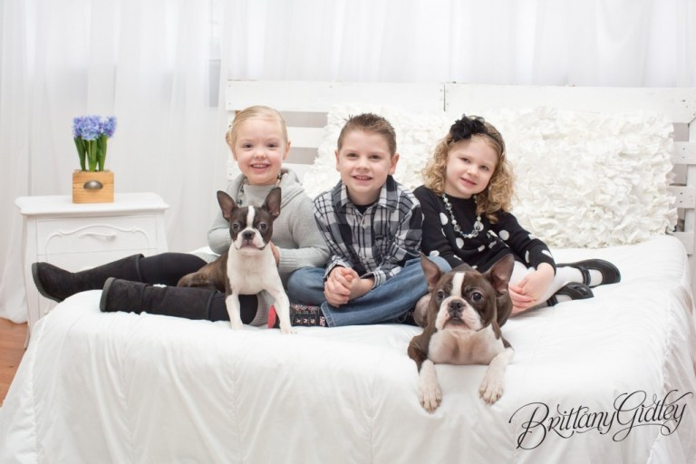 Child Photography | Start With The Best | Brittany Gidley Photography LLC | www.brittanygidleyphotography.com | Kids | Boston Terriers