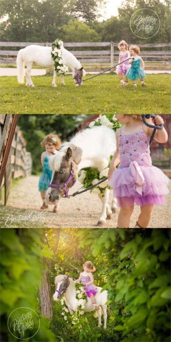 Pony Princesses | Cleveland Ohio | Dream Sessions | Dream Session | Child Photographer | Child Photography | Best Child Photographer