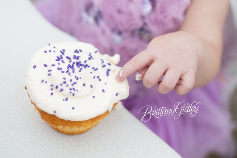 Colossal Cupcakes | Cake Smash | Photographer | Purple