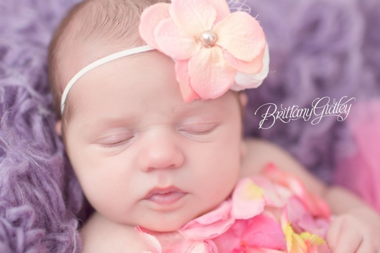 Newborn Portraits | Newborn Photographer | Cleveland Ohio