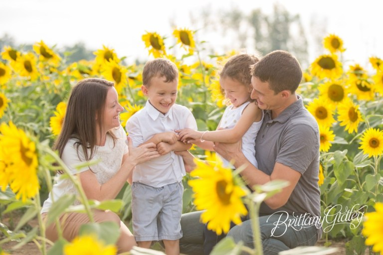 Sunflower Dream Session | Prayers From Maria | Family Photography | Cleveland Ohio