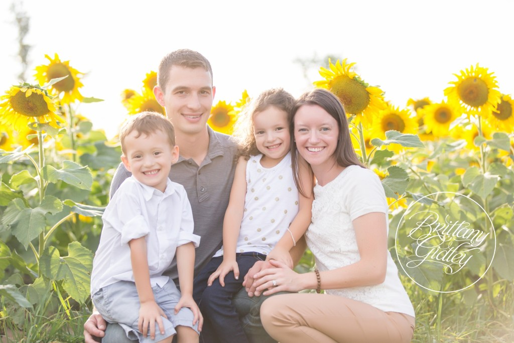 Sunflower Dream Session | The Ludwig Family