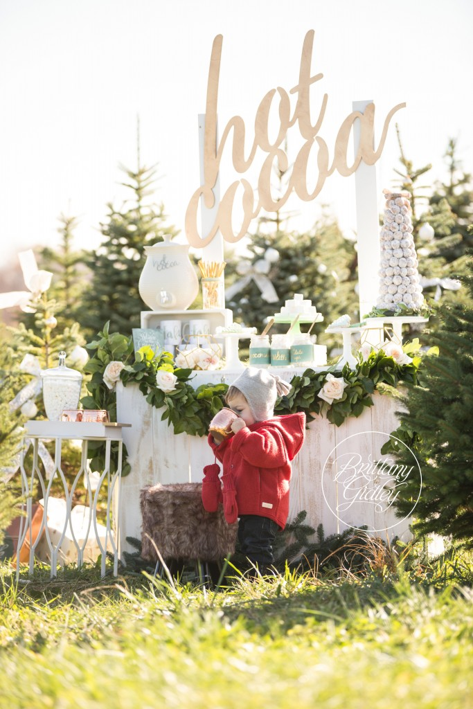 Tree Farm Dream Mini Sessions-14