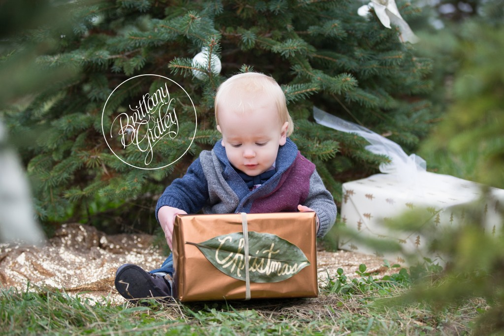 Tree Farm Dream Mini Sessions-42