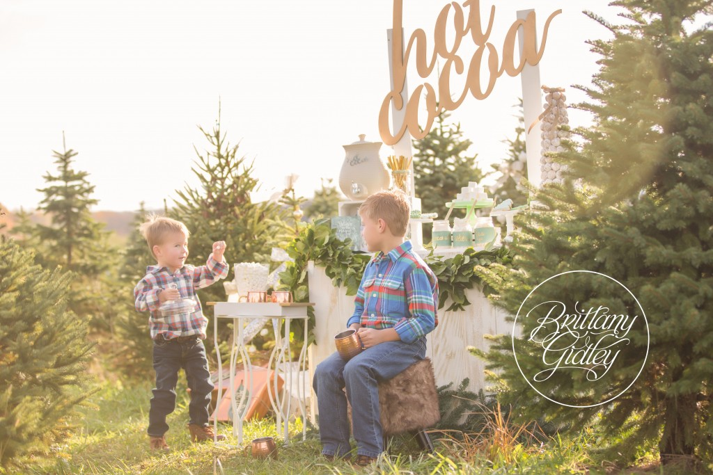 Tree Farm Dream Mini Sessions-5