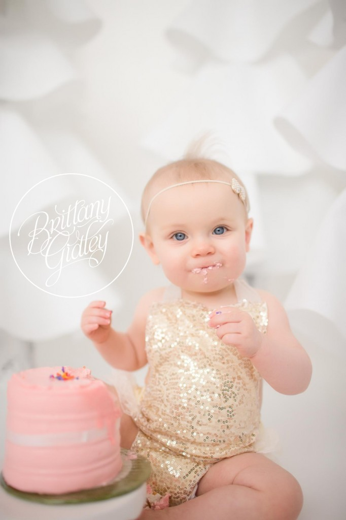 Cake Smash Photographer | Cake Smash | Baby Photographer | Cleveland Ohio