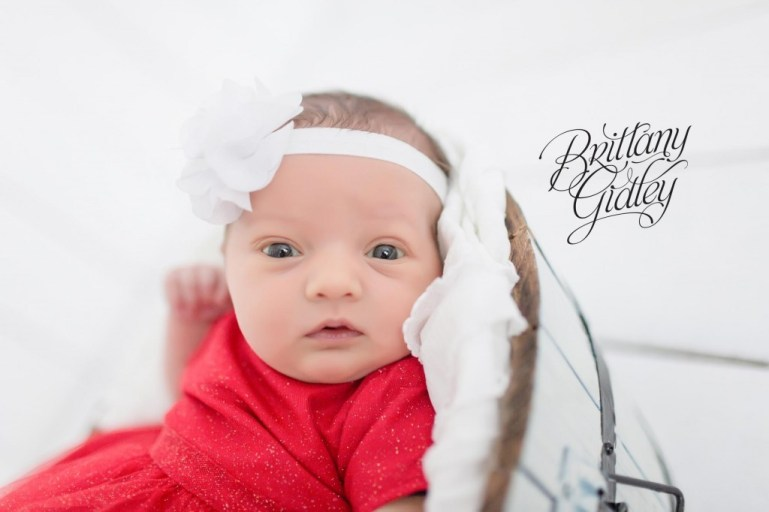 Newborn Portraits | Newborn Photographer | Extended Family Potraits | Family | Start With The Best | Brittany Gidley Photography LLC