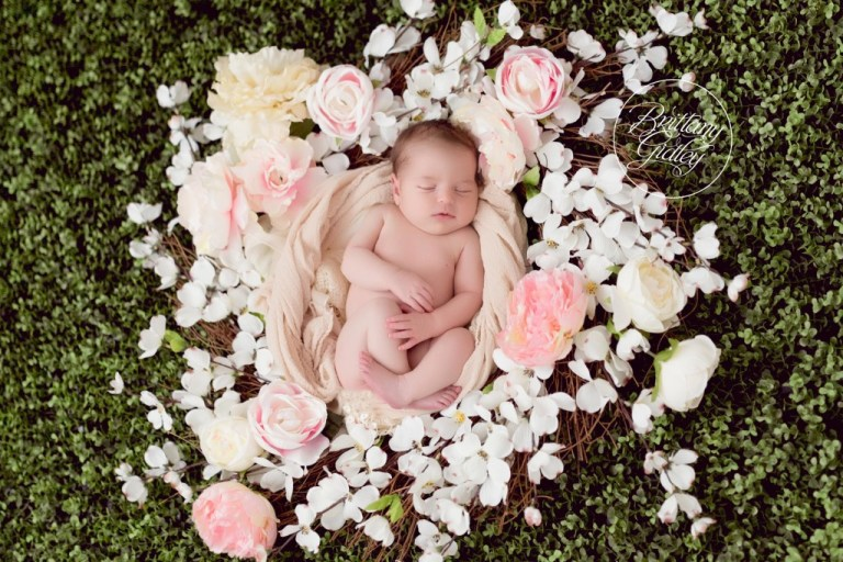 Fresh Floral | Newborn Baby Girl | Baby Photographer | Baby Photography | Cleveland Ohio | Newborn Photography Studio | Studio | Baby | Family | It's A Girl | Start With The Best