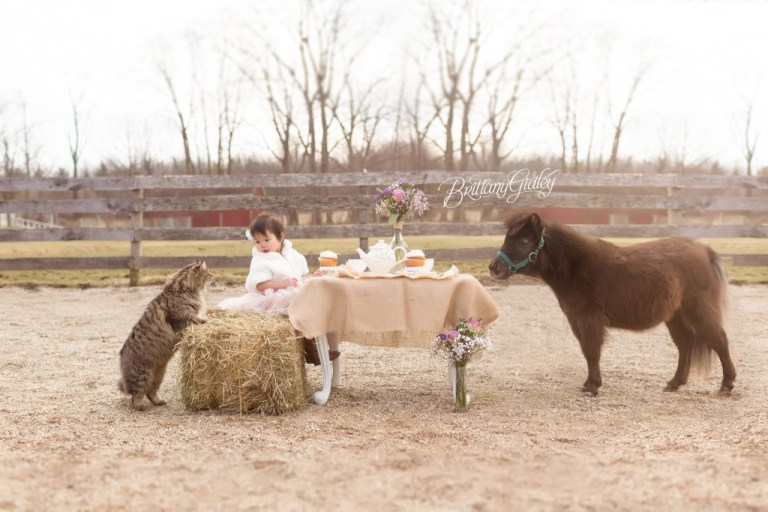 Whimsical Child Photographer   Sisters   Rainey's Closet   Tea Party   Ponies   Pony Farm   Tutu Du Monde   Start With The Best   Cleveland Ohio   Farm   Equine   Horse Photo Shoot   Dream Session www.brittanygidleyphotography.com