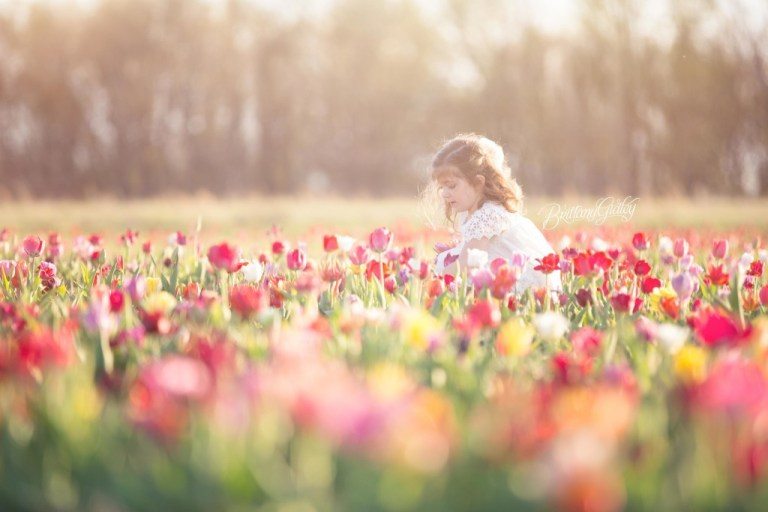 Tulip Field   Details   Children   Photo Shoot   Photography   Fun